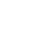 VIP Experience Watermark
